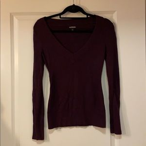 Plum fall sweater by Express